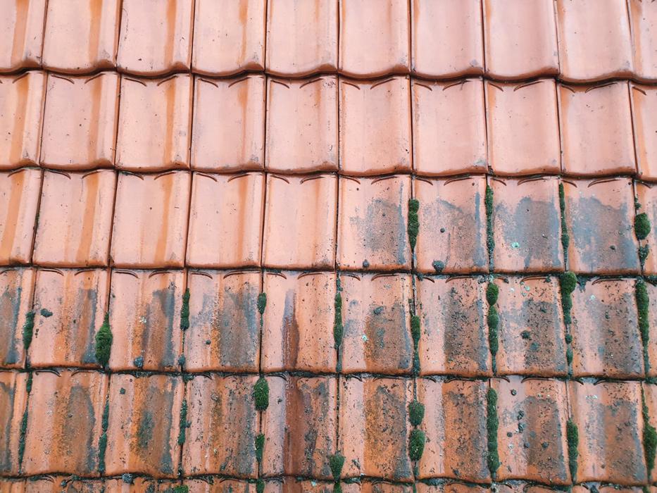 dakpannen reinigen voor en na